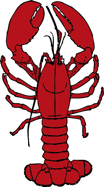 cartoon, ocean, lobster, crab, sea, crustaceans, hermit