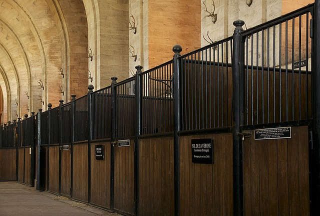 chantilly, france, stable, stables, horse, structure