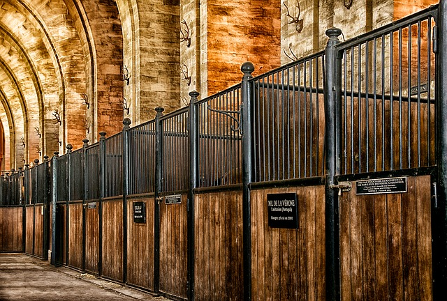 chantilly, france, stables, building, stalls, horse