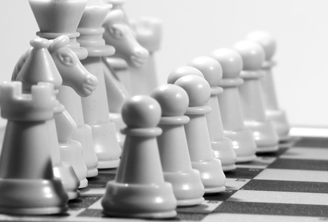 chess, figures, play, white, chess game