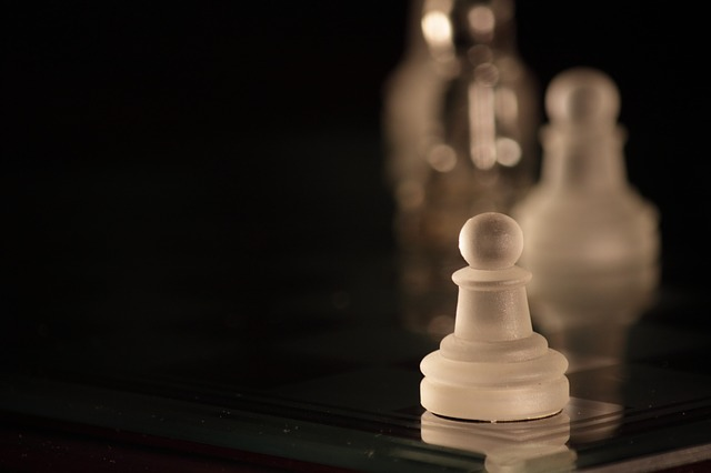 chess, pawn, white, chess board, parts, pawns, game