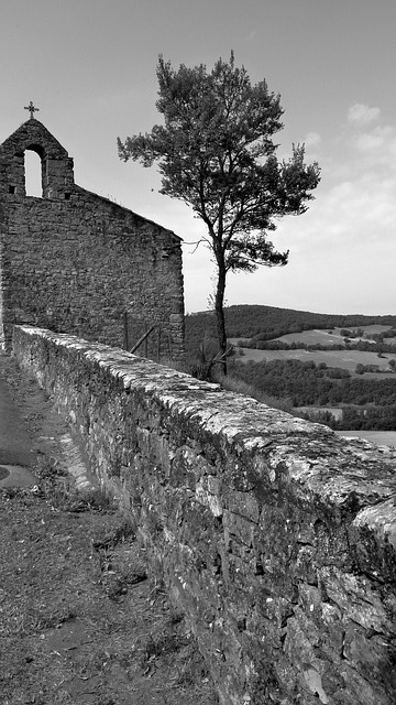 church, tree, path, horizon, black and white, puycelsi
