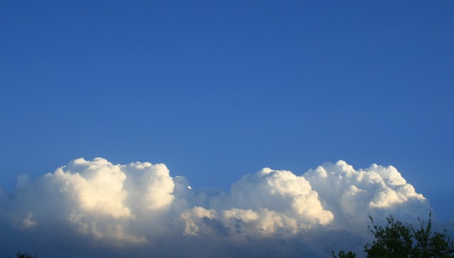 clouds, white, cumulus, large, dense, packed, tops