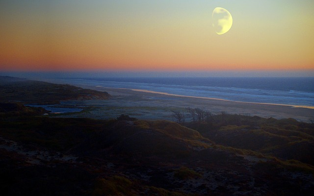 coast, beach, ocean, sea, moon, landscape, shine