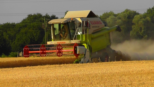 combine harvester, harvest, work, machines, machine