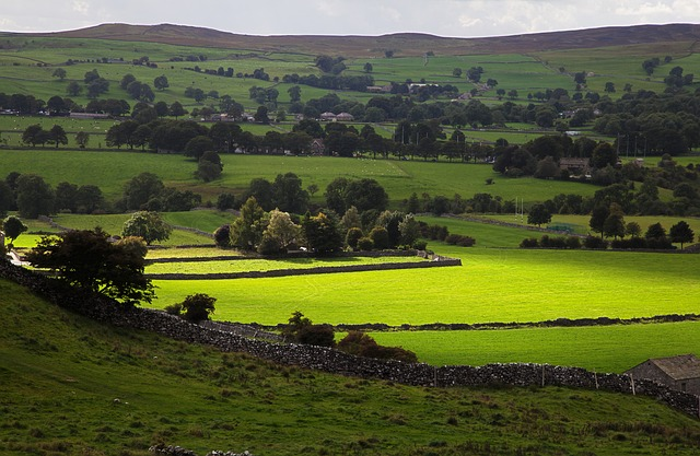 country, countryside, dales, england, english, farm