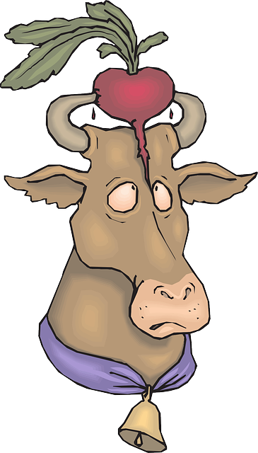 cow, bell, radish, vegetable, horns, animal, with