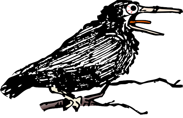 crow, alone, bird, black, cawing, croak, croaking, sing