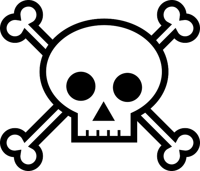 death's head, bones, crossbones, pirate, skull