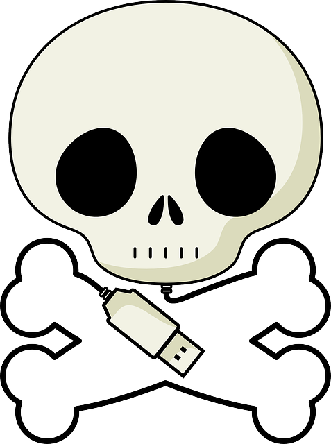 death's head, skull, crossbones, pirate, plug, usb