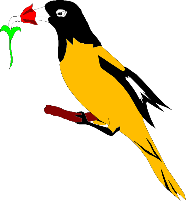 digital, flower, wings, art, beak, with, oriole