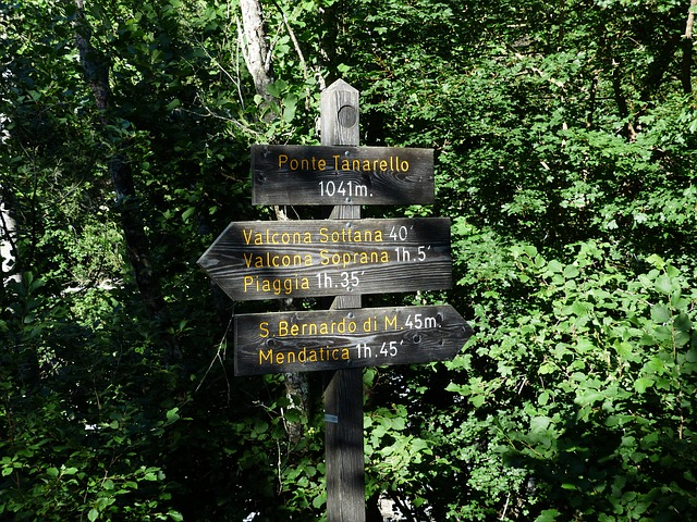 directory, signposts, hiking trails, direction, marking