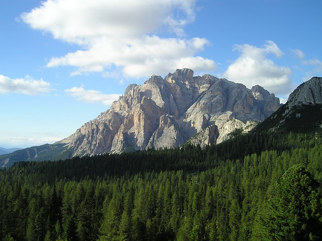 dolomites, mountains, forest, alpine, south tyrol