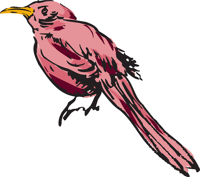 drawing, pink, bird, wings, art, animal, feathers