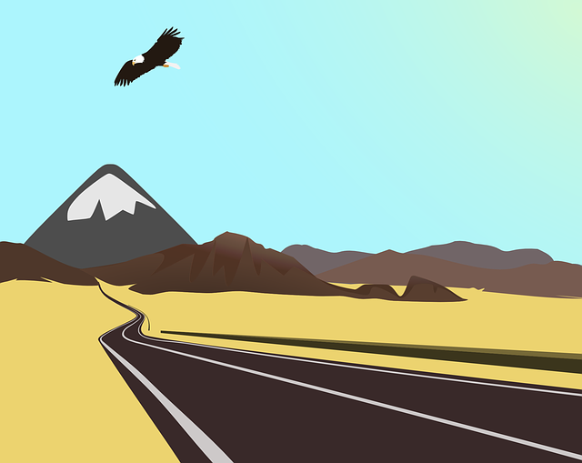 drive, mountain, eagle, fly, free, flight, freely