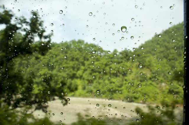 droplets, water, leaf, window, droplet, nature