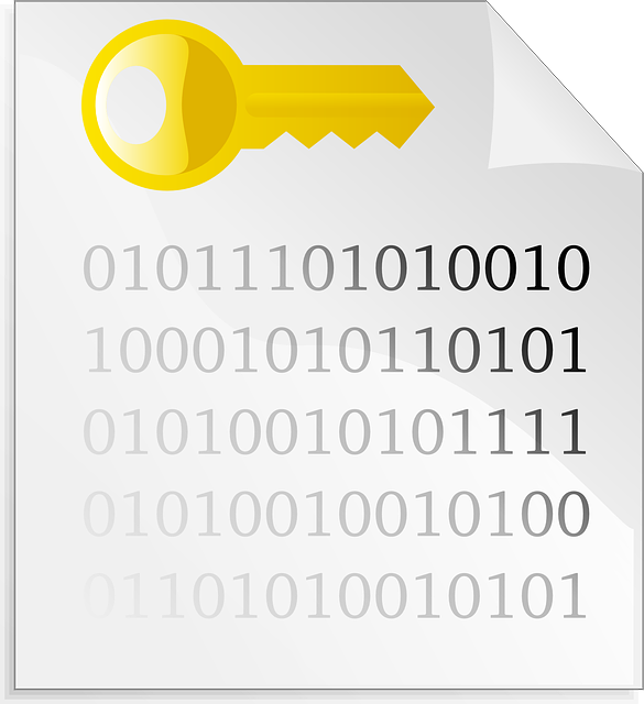 encrypted, binary, file, computer, key, page, paper