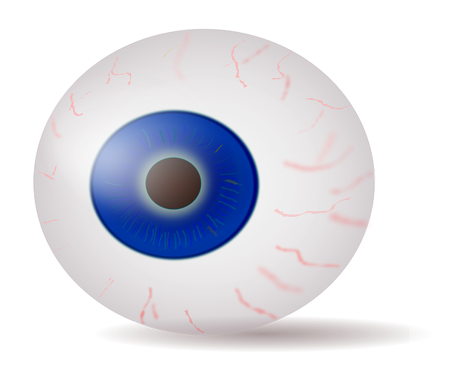 eye, eyeball, iris, blue, stare, horror, anatomy, human