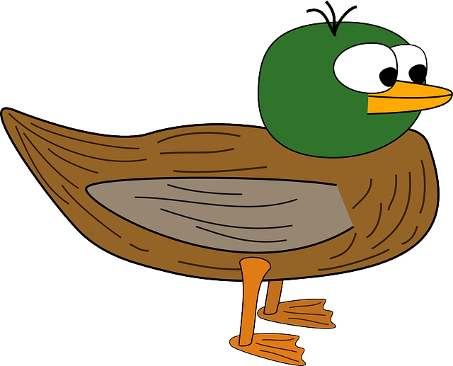 eyes, large, cartoon, duck, wings, beak, feathers