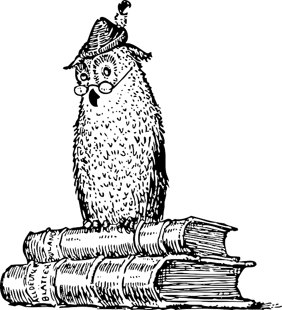 feather, cartoon, bird, owl, free, books, book, hat