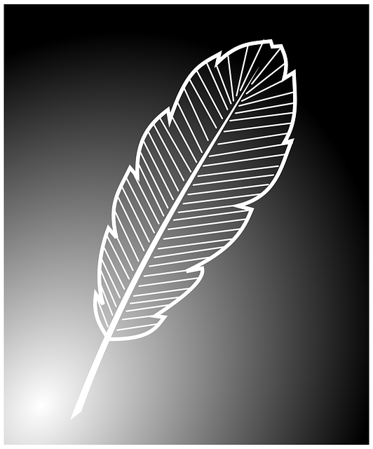 feather, white, delicate, bird