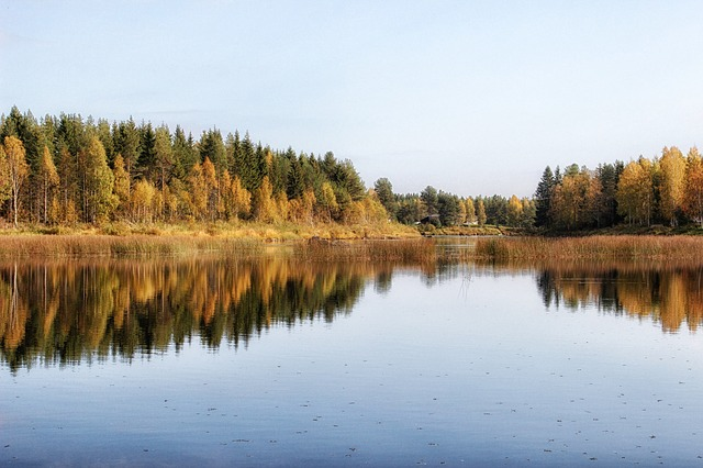 finland, lake, water, pond, reflections, fall, autumn