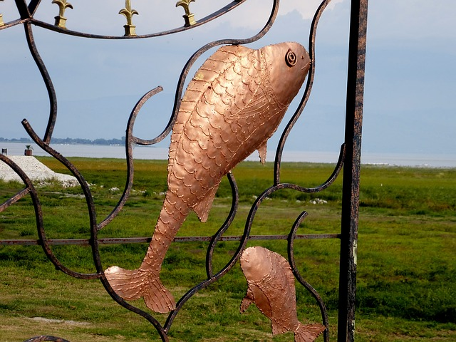 fish, art, contour, iron, metal
