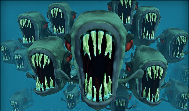 fish, water, animal, fish swarm, piranha, dangerous