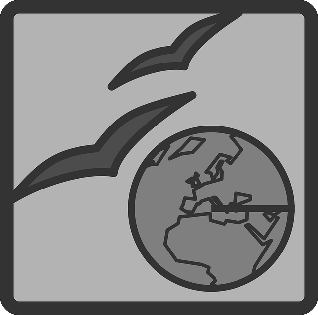 flat, globe, world, web, theme, icon