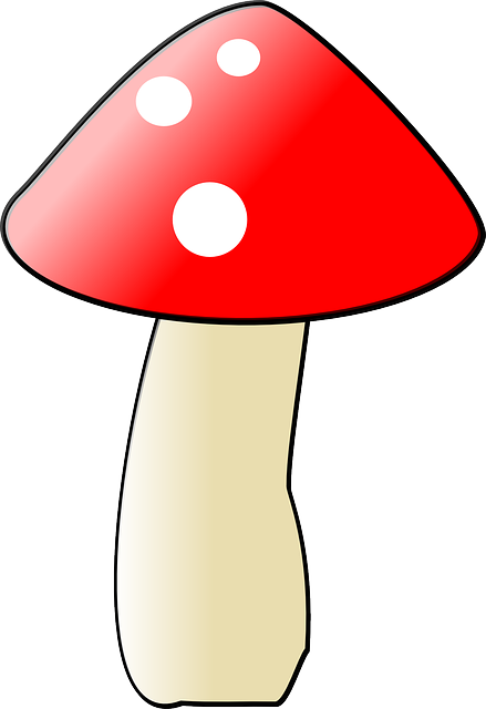 flat, icon, mushroom, cartoon, mushrooms, vegetable