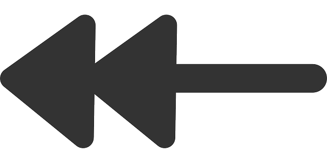 flat, left, double, arrows, theme, action, arrow