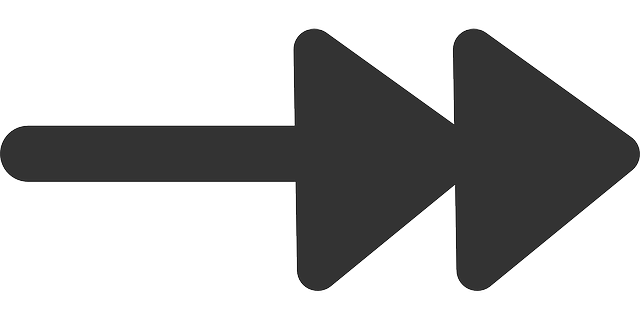 flat, right, double, arrows, theme, action, icon, arrow