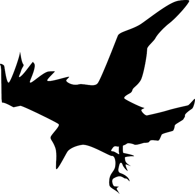 flat, sketch, silhouette, cartoon, down, eagle, spring