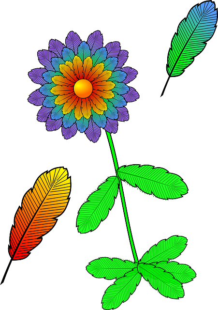 flower, colorful, plant, bloom, feathers, autumn