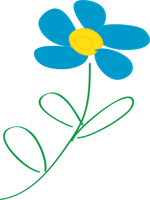 flower, daisy, leaves, yellow, blue, bloom, beauty