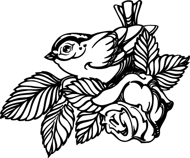 flower, rose, bird, wings, leaves, art, with, feathers
