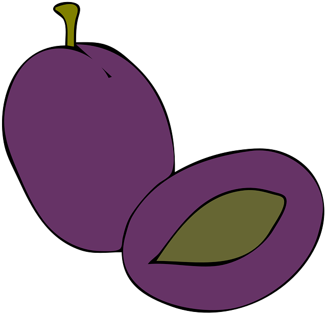 food, fruit, cartoon, purple, free, fruits, plant, plum