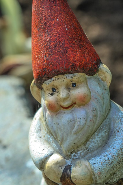 garden gnome, the elf, decorative, in the garden