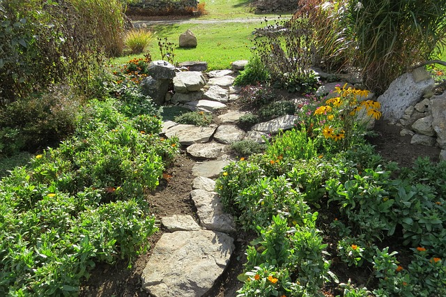 garden, path, plants, country, stone