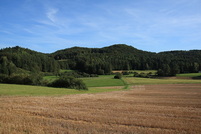 germany, landscape, scenic, mountains, forest, trees