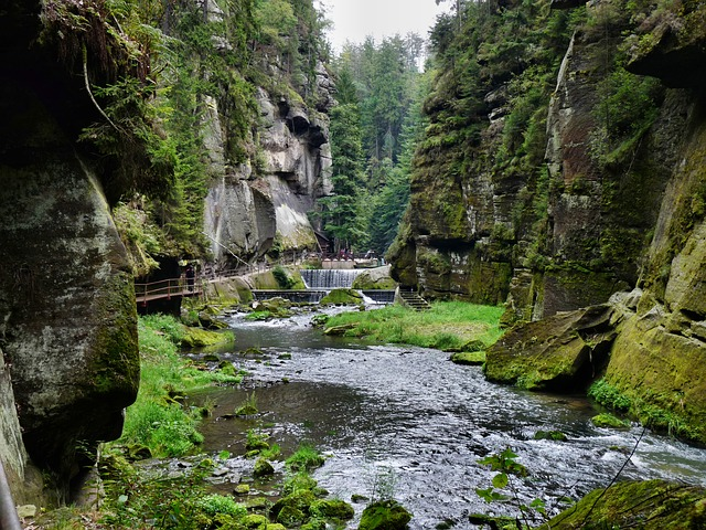gorges in h?ensko, bohemian switzerland, gorge, rock