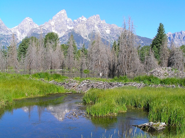grand teton national park, wyoming, landmark