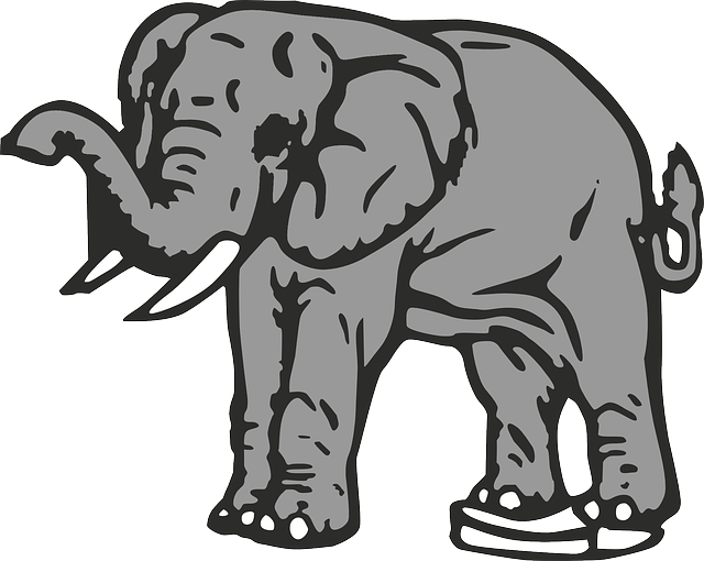 gray, large, africa, elephant, animal, creature, mammal