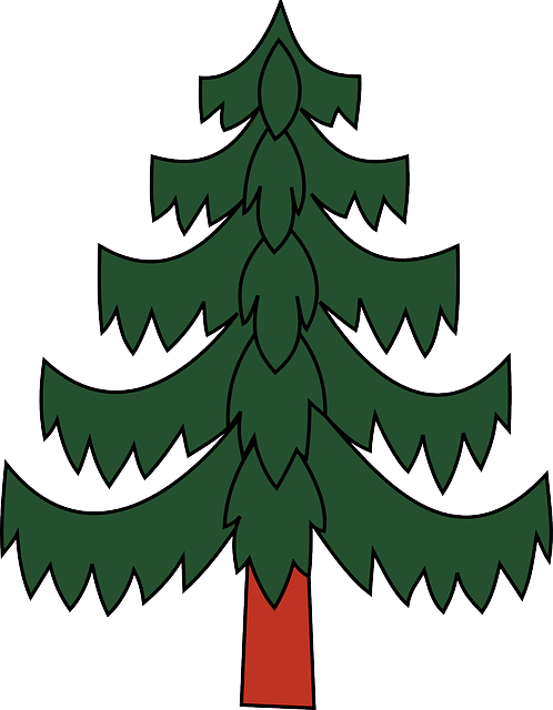green, earth, tree, christmas, plant, pine