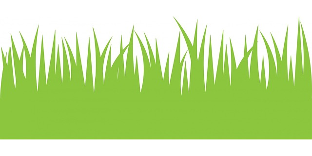 green grass, grass, green, clipart, illustration