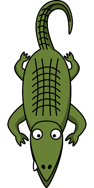 green, simple, cartoon, tail, reptile, alligator