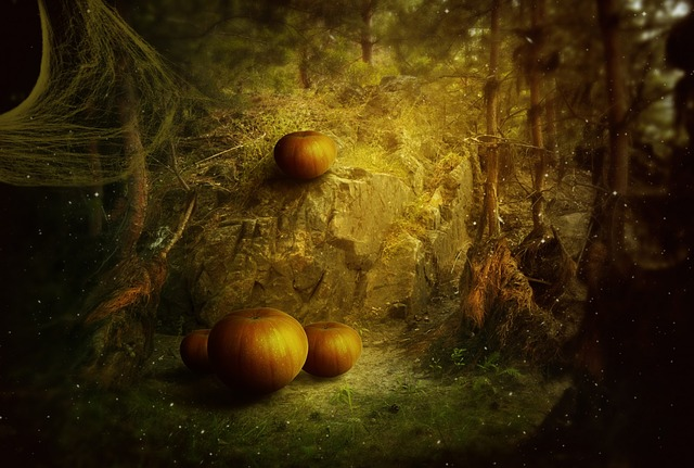 halloween, holiday, pumpkin, fantasy, dark, forest