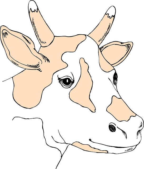 head, brown, light, cow, colored, animal, color