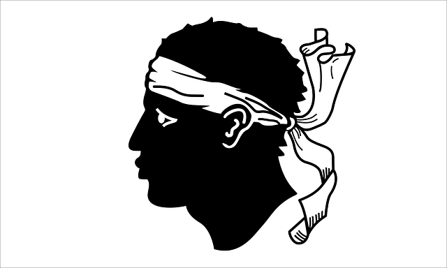 head, france, flag, sign, people, man, silhouette