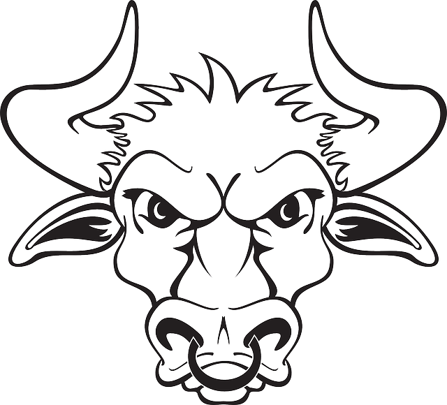 head, outline, bull, ring, sharp, nose, horns, with